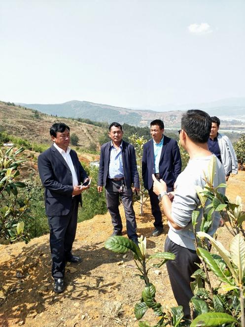 汤郎乡人大主席张宁同志带领典文村两委同志到云南润益农业开发有限公司参观学习
